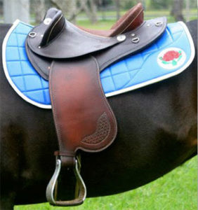 scott-welsh-saddle